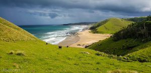 Eastern Cape Wild Coast Walk