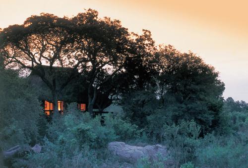 Sabi Sabi Little Bush Lodge Sabi Sands