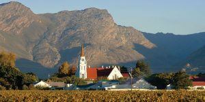Breedekloof Cape winelands