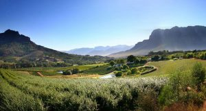 Cape Winelands Cape Town