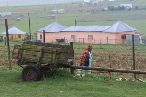 Rural Village Eastern Cape