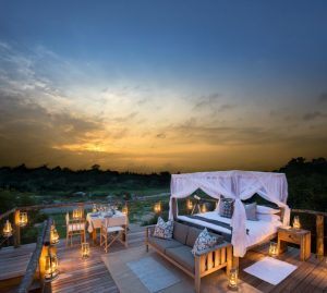 Tinga treehouse Lion sands kruger Park Safari.