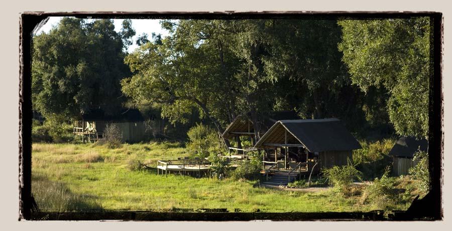 Duba Plains Okavango Delta Botswana