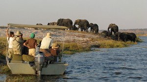 Chobe Houseboat Zambezi queen