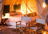 Moremi tent for walking safari