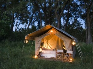 Chobe safari walk in tented camp with private ablutions